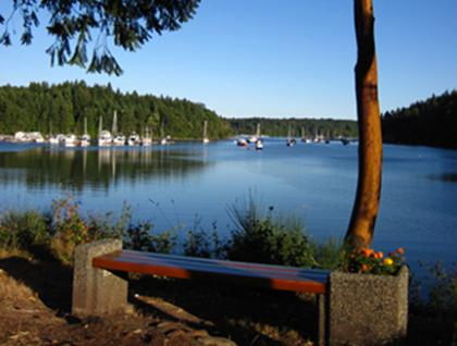 Ferguson's bench over Telegraph Harbour