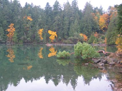 Telegraph Harbour in Fall