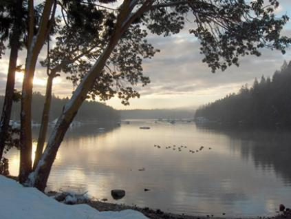 Telegraph Harbour winter morning